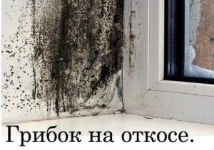 Ремонт окон в Минске,плачет окна?К чему это может привести?